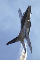 A36F1702.jpg